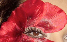 red flawers make up