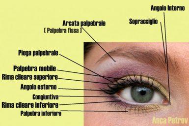 terminologia trucco occhi